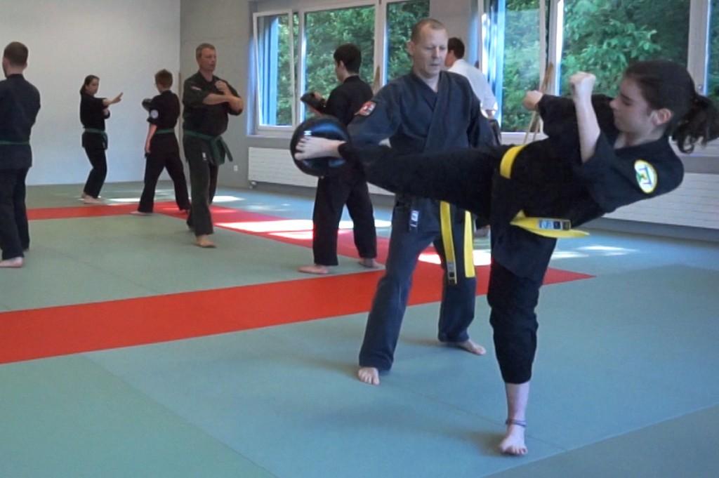Kampfkunst Kung Fu und Samurai Schwertkampf