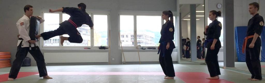 kung fu global korean martial arts federation. Black Bedroom Furniture Sets. Home Design Ideas