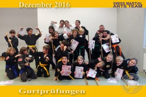 2016-12 Gurtpruefung 30