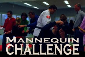 Mannequin Challenges